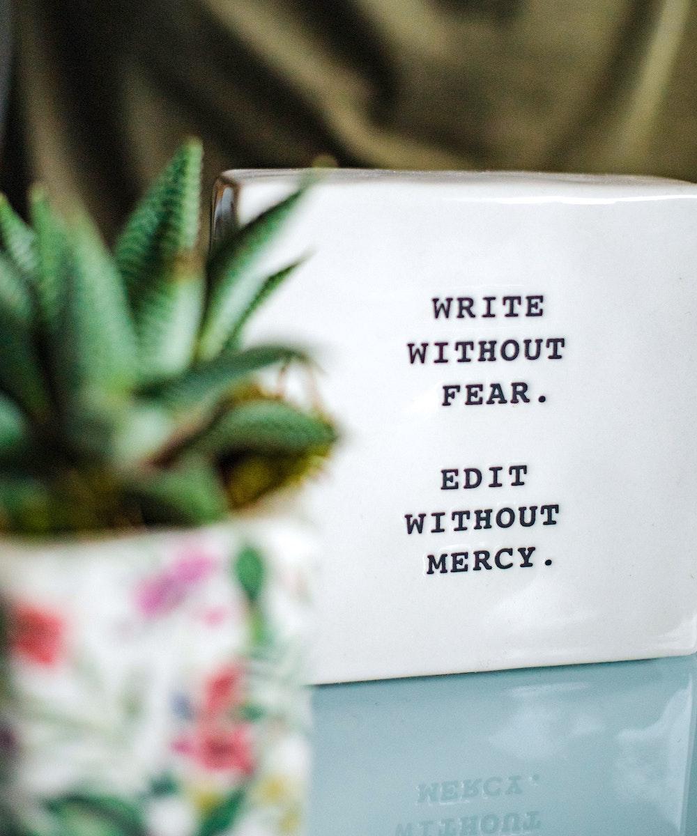 Scrivi senza paura. Edita senza pietà