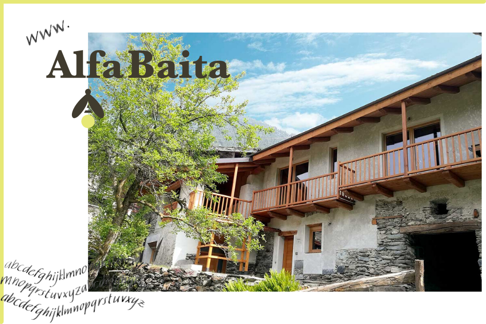 portfolio AlfaBaita